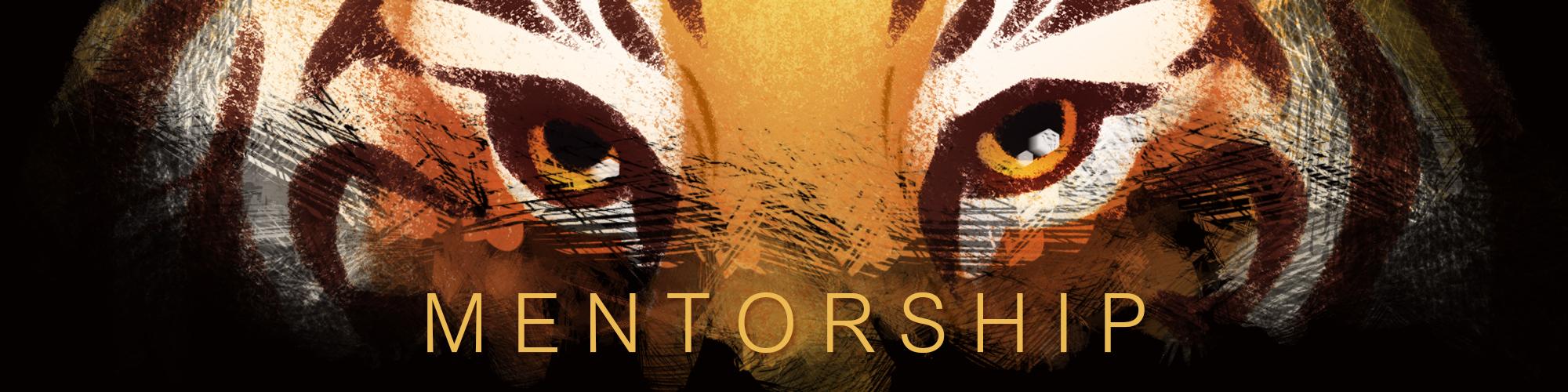 mentorship cover